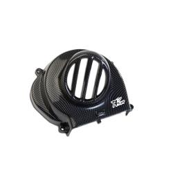 Capac racire motor PiaggioTyphoon carbon-0